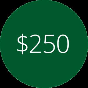 Membership - $250 Level